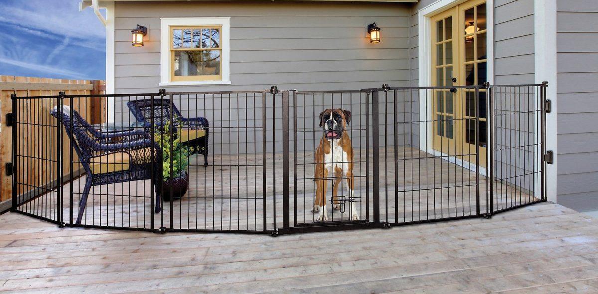 Dog-gate-buy