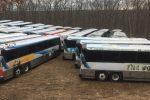 bus buyers